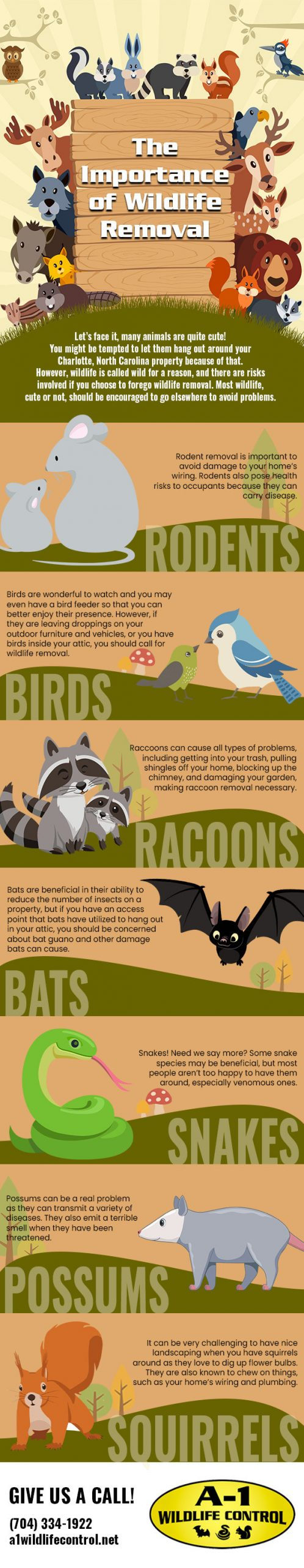 The importance of wildlife removal